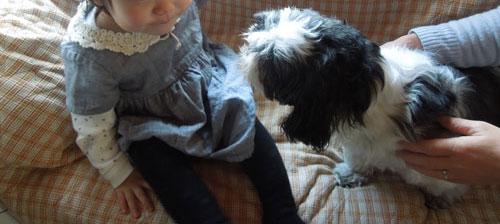 1歳7ヶ月のゆうちゃんは「何かと食べさせたがる布団の侵略者」でした