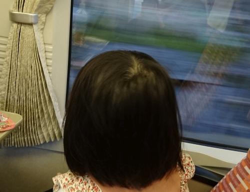 4歳児と2人で往復14時間の電車の旅を行ったので備忘録(前編)